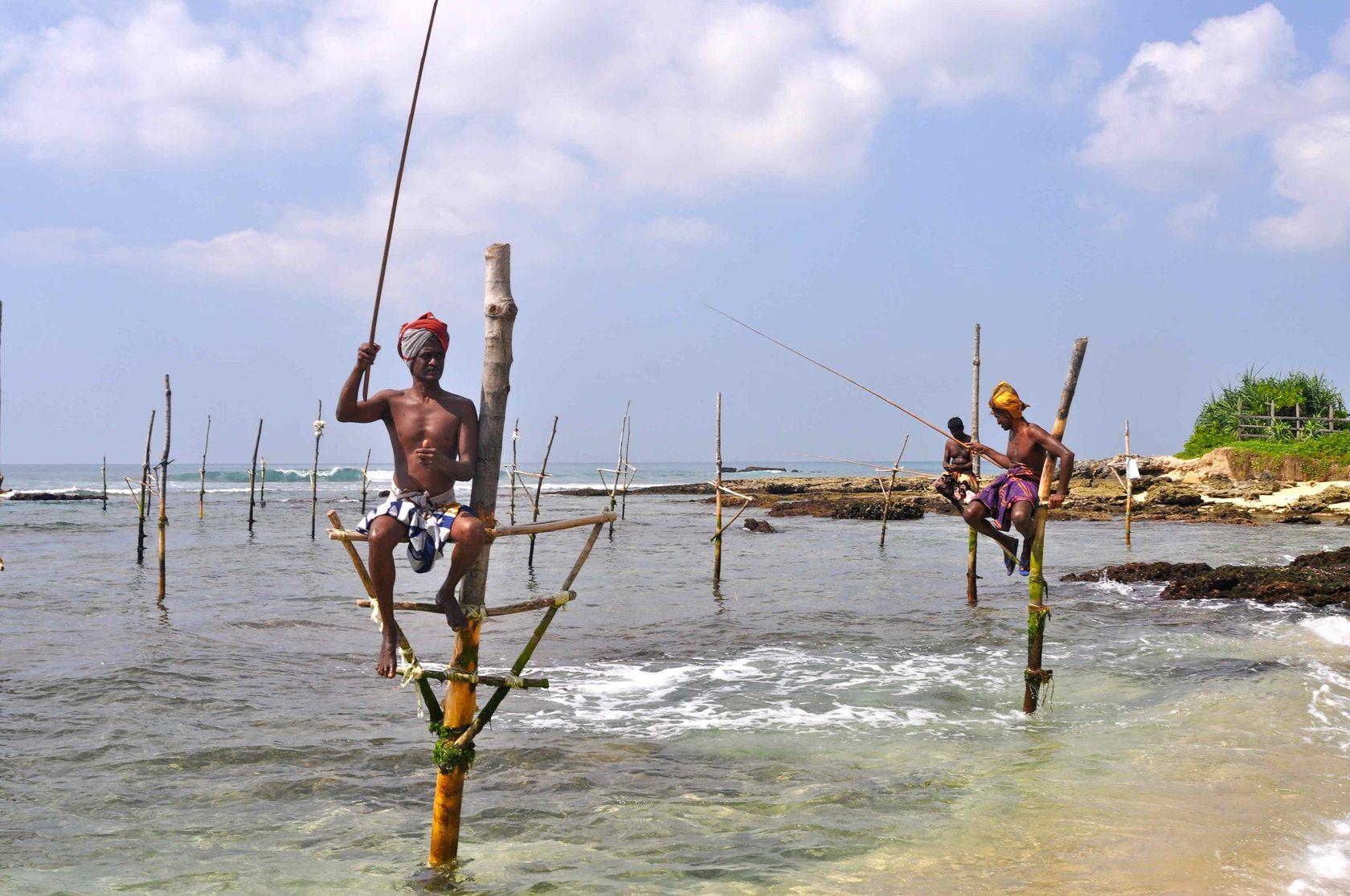 """""""Viva de graça no Sri Lanka"""" - o casal construiu um negócio com base nisso, quem gosta de viver com estranhos"""