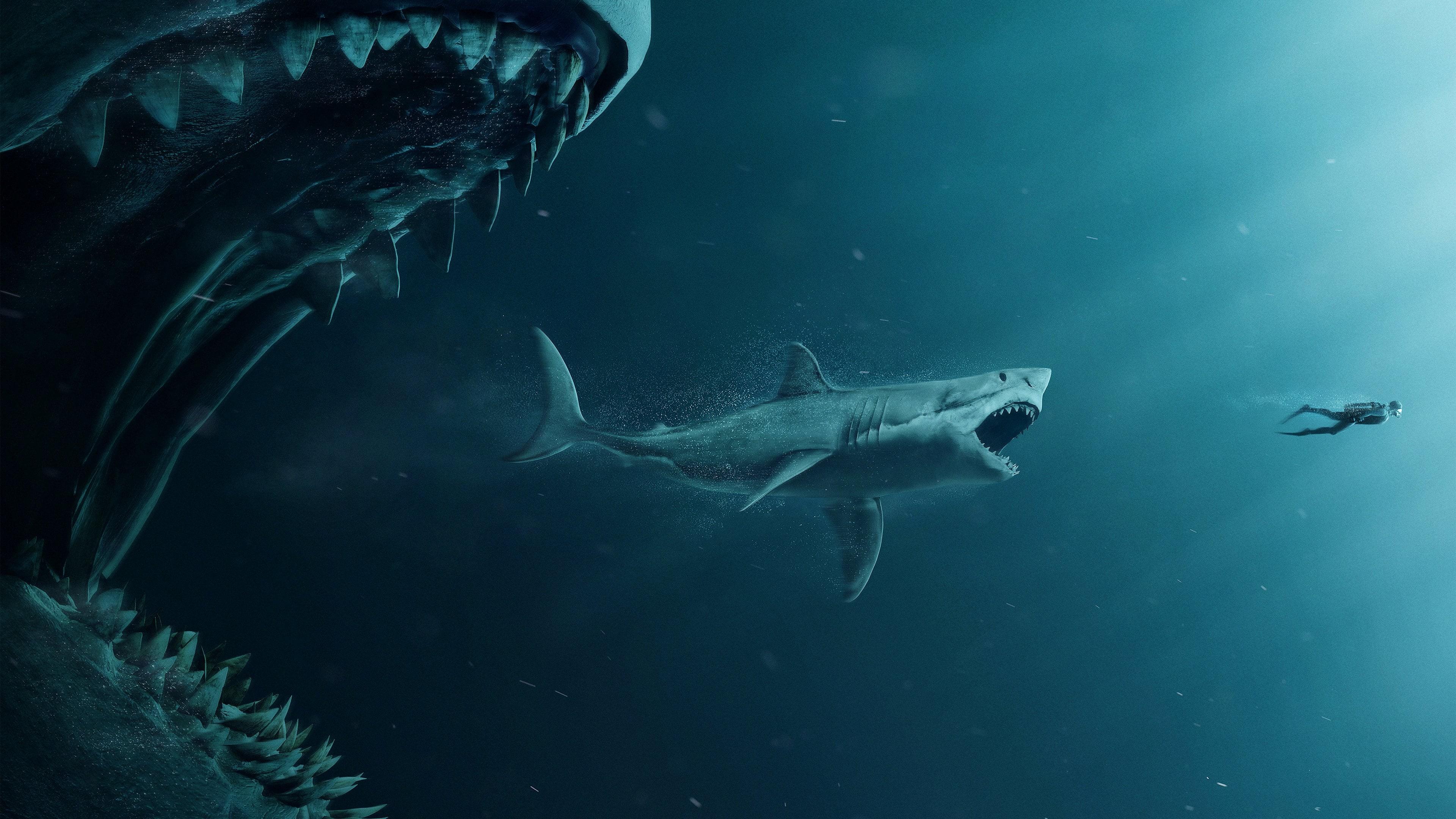 Акула-мегалодон: топ 10 удивительных фактов об этом ужасном чудовище
