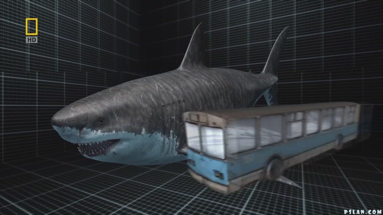 Жив ли мегалодон в океане? гигантская древняя акула вымерла? не верьте этим видео, факты 2018