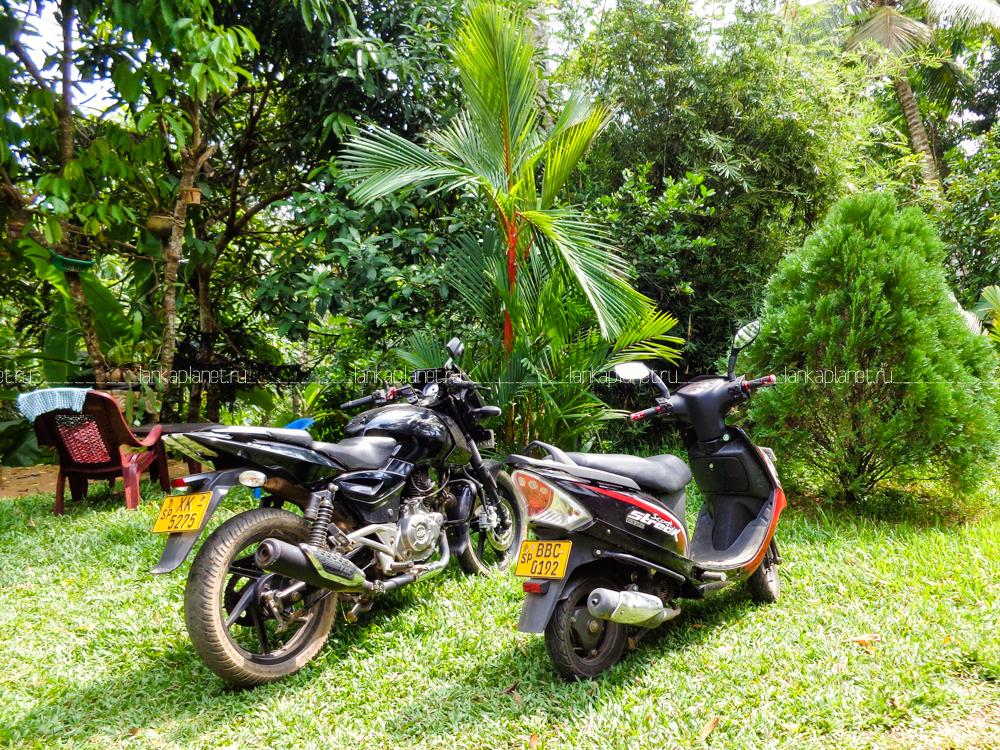 Шри-ланка — kuku.travel