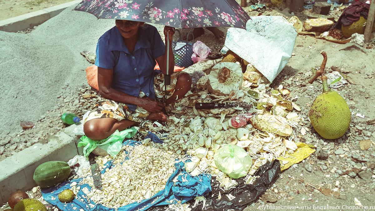 Шри-ланка. часть ii. города