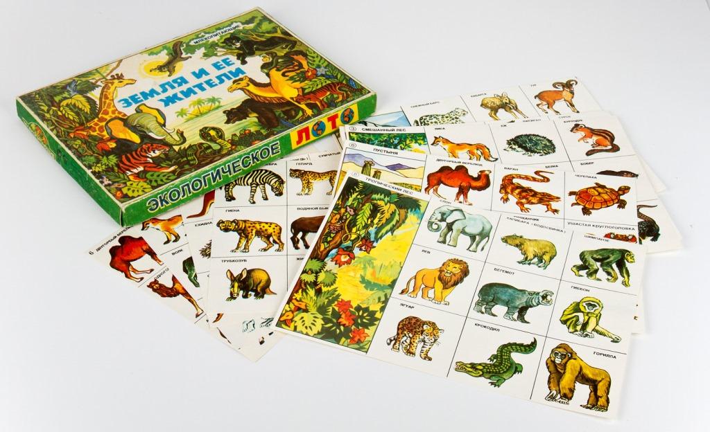 """Игра по  экологии """"флора и фауна"""""""