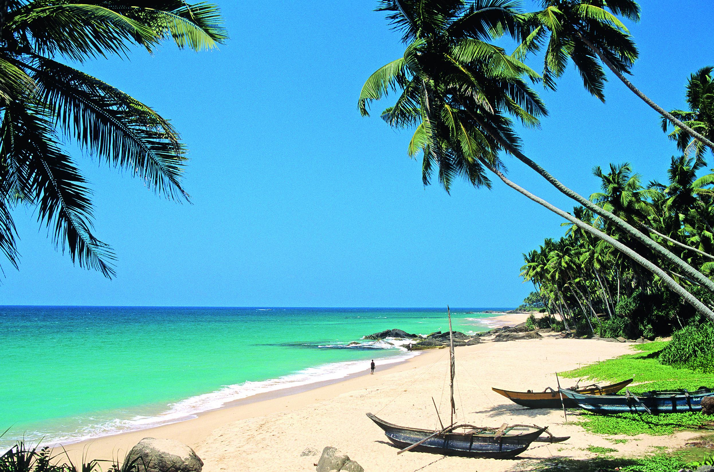 Guia de viagens do Sri Lanka: como ir por conta própria, descanse no sri lanka, preços, atrações, avaliações, foto | a vida é como uma jornada